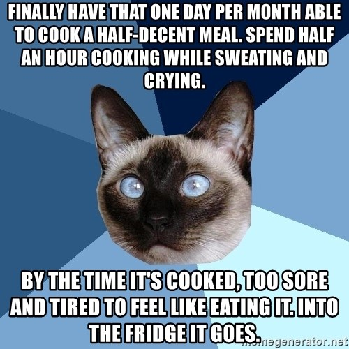 Chronic Illness Cat - FINALLY have that one day per month able to cook a half-decent meal. Spend half an hour cooking while sweating and crying. By the time it's cooked, too sore and tired to feel like eating it. Into the fridge it goes.