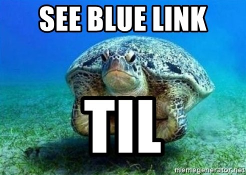 disappointed turtle - see blue link til
