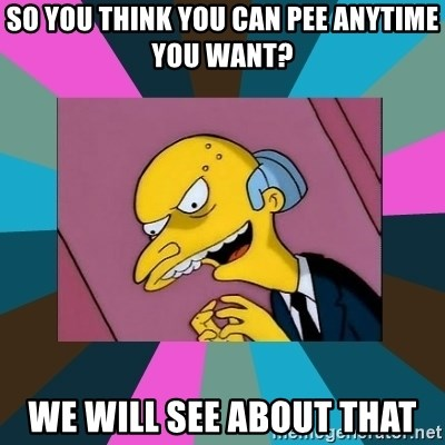 Mr. Burns - SO YOU THINK YOU CAN PEE ANYTIME YOU WANT? WE WILL SEE ABOUT THAT