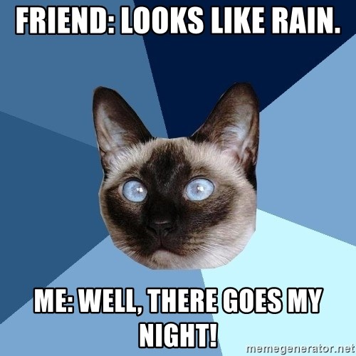Chronic Illness Cat - Friend: Looks like rain. Me: Well, there goes my night!