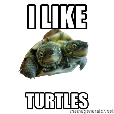 Tips Only Two-Headed Turtle - I LIKE  TURTLES