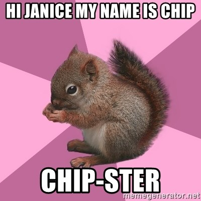 Shipper Squirrel - HI JANICE MY NAME IS CHIP CHIP-STER