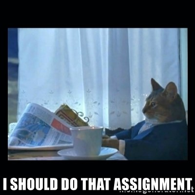 1% cat -  I should do that assignment