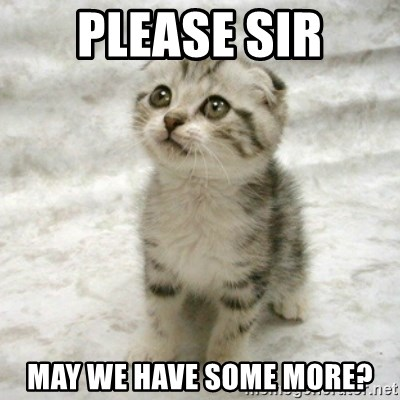 Can haz cat - please sir may we have some more?