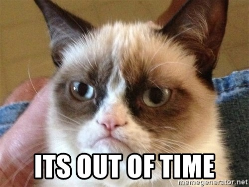 Angry Cat Meme -  Its Out of time