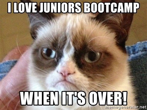 Angry Cat Meme - I love juniors bootcamp When it's OVER!