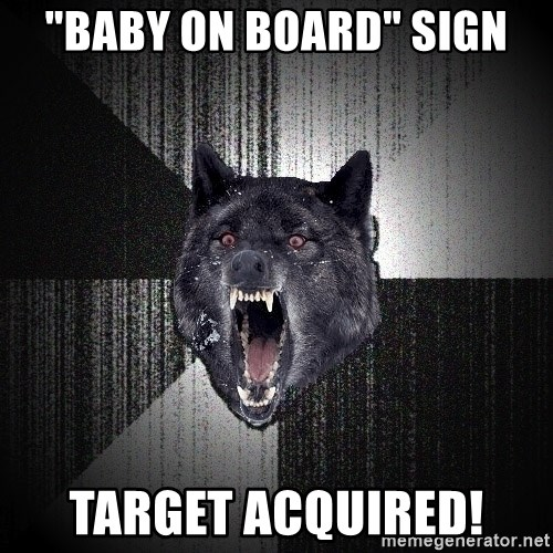 """Insanity Wolf - """"baby on board"""" sign target acquired!"""