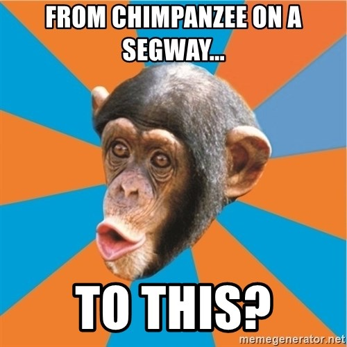 Stupid Monkey - FROM CHIMPANZEE ON A SEGWAY... TO THIS?