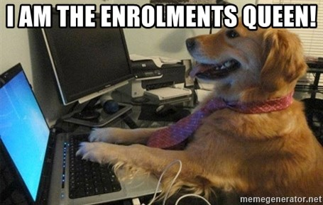 I have no idea what I'm doing - Dog with Tie - I AM THE ENROLMENTS QUEEN!
