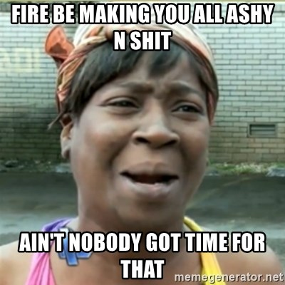 Ain't Nobody got time fo that - Fire be making you all ashy n shit Ain't nobody got time for that