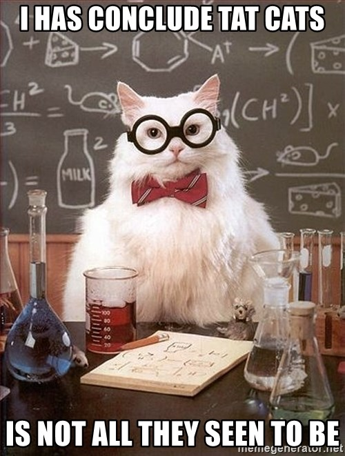 Science Cat - I HAS CONCLUDE TAT CATS IS NOT ALL THEY SEEN TO BE