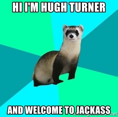 Obvious Question Ferret - HI I'M HUGH TURNER AND WELCOME TO JACKASS