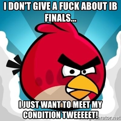 Angry Bird - I DON'T GIVE A FUCK ABOUT IB FINALS... I JUST WANT TO MEET MY CONDITION TWEEEEET!