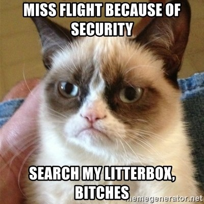 Grumpy Cat  - miss flight because of security search my litterbox, bitches