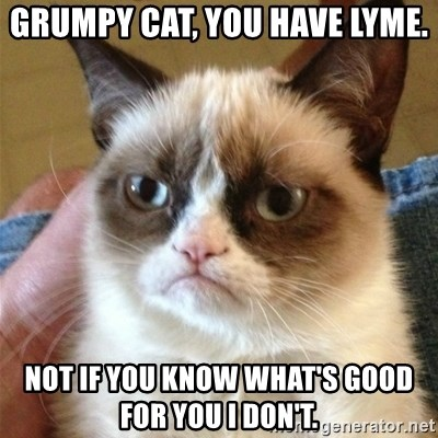 Grumpy Cat  - Grumpy cat, you have Lyme. Not if you know what's good for you I don't.