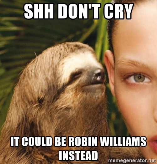 The Rape Sloth - ShH don't cry  It could be rObIn Williams instead