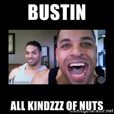 The Hodgetwins - BUSTIN ALL KINDZZZ OF NUTS