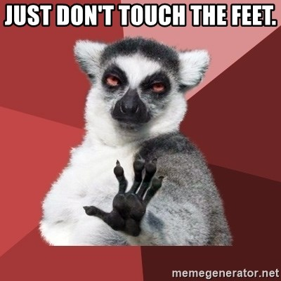 Chill Out Lemur - Just don't touch the feet.