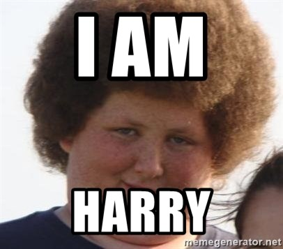 Ladies Please - I AM  HARRY