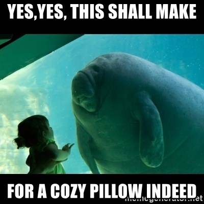 Overlord Manatee - YES,YES, THIS SHALL MAKE FOR A COZY PILLOW INDEED