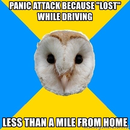 "Bipolar Owl - Panic attack because ""lost"" while driving less than a mile from home"