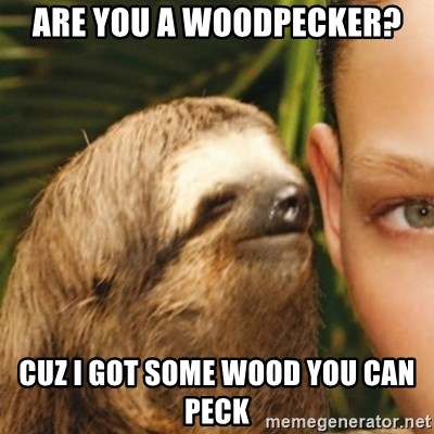 Whispering sloth - Are you a woodpecker? Cuz I got sOme Wood You can peCk