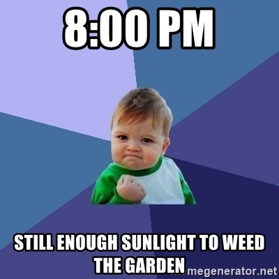 Success Kid - 8:00 pm sTILL ENOUGH SUNLIGHT TO WEED THE GARDEN