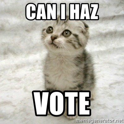 Can haz cat - Can i Haz Vote