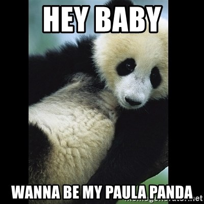 I love you panda - Hey Baby  Wanna be my paula panda