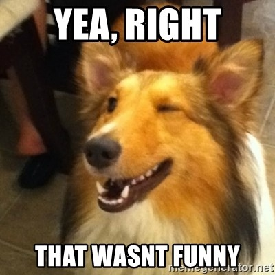 Wink Dog - Yea, right That wasnt funny