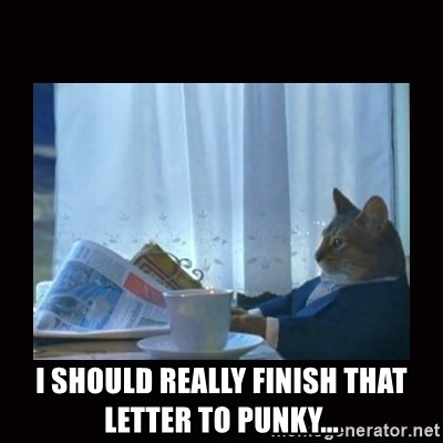 i should buy a boat cat -  I should really finish that letter to punky...