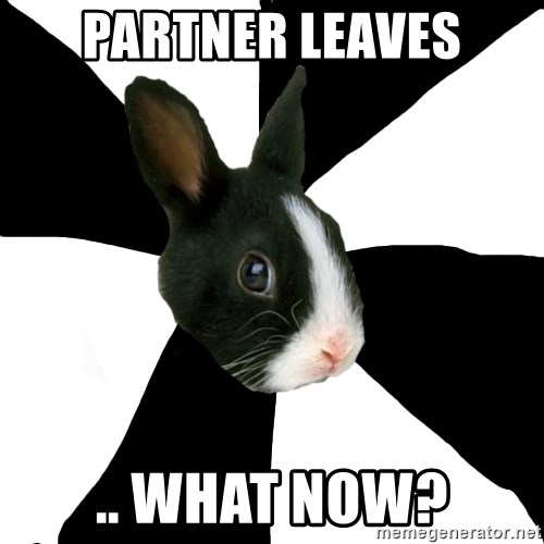 Roleplaying Rabbit - partner leaves .. what now?