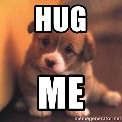 cute puppy - Hug ME