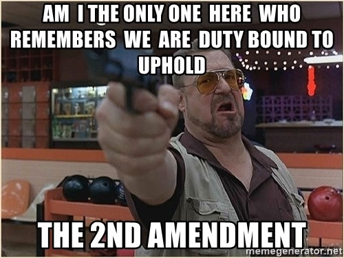 WalterGun - am  i the only one  here  who  remembers  we  are  duty bound to uphold the 2nd amendment