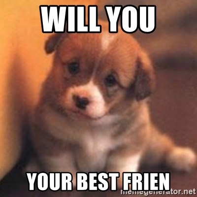 cute puppy - Will you  Your beSt frien