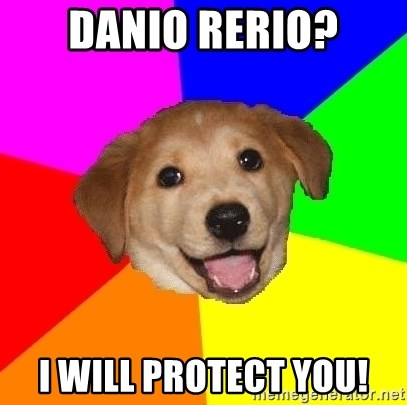 Advice Dog - Danio rerio? I will protect you!