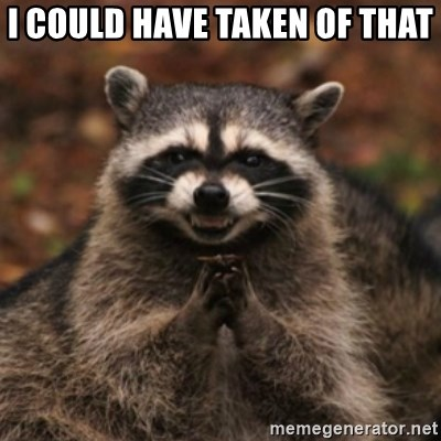 evil raccoon - I COULD HAVE TAKEN OF THAT