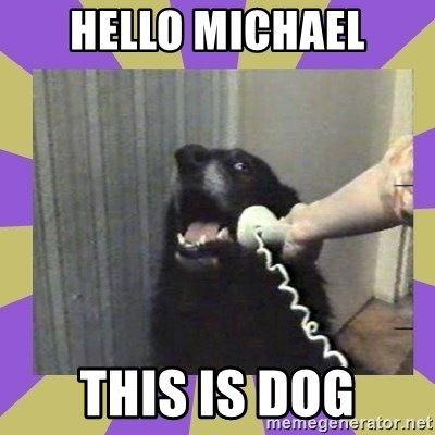 Yes, this is dog! - hello michael this is dog