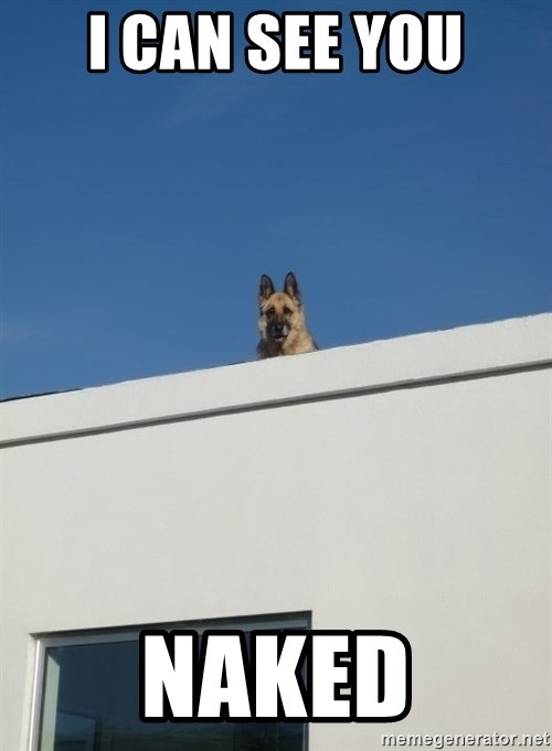 Roof Dog - i can see you naked