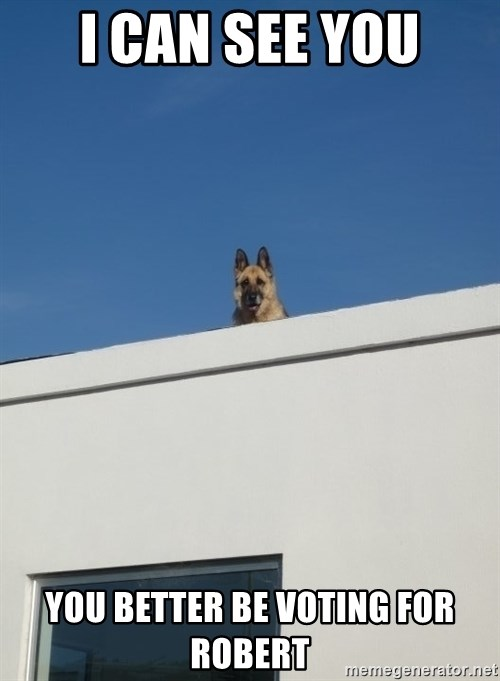 Roof Dog - i can see you you better be voting for robert