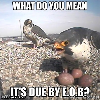 #CEFalcons - What Do You Mean It's Due By E.O.B?