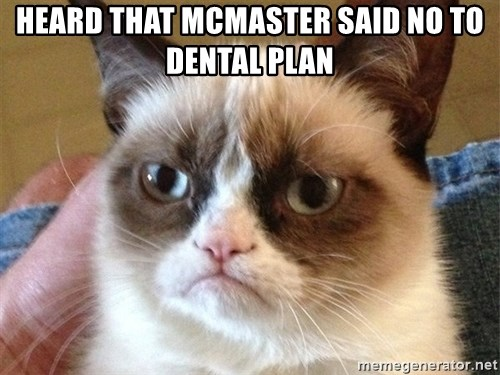 Angry Cat Meme - Heard that Mcmaster said no to dental plan