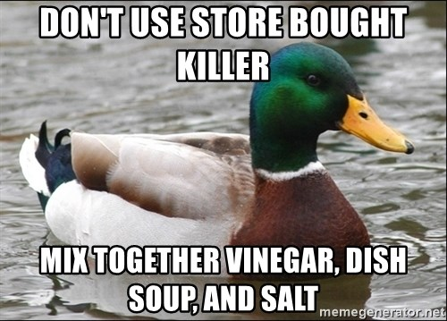 Actual Advice Mallard 1 - don't use store bought killer  mix together vinegar, dish soup, and salt