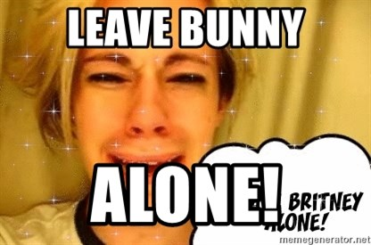 leave britney alone - LEAVE BUNNY ALONE!