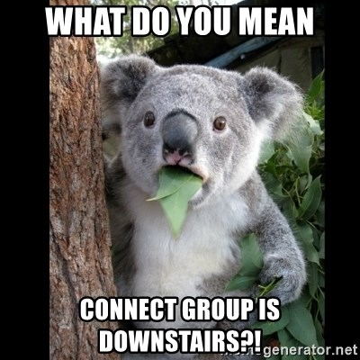 Koala can't believe it - what do you mean Connect group is downstairs?!