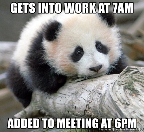 sad panda - Gets into work at 7am Added to meeting at 6pm