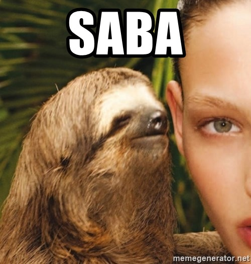 The Rape Sloth - Saba