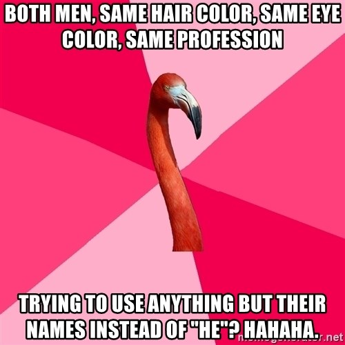 """Fanfic Flamingo - BOTH MEN, SaMe hair color, Same eye color, SAME PROFESSION Trying to use anything but their names instead of """"He""""? Hahaha."""