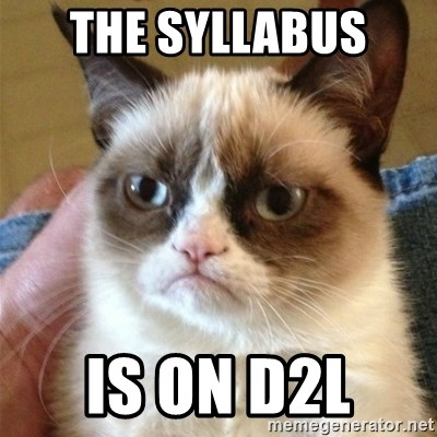 Grumpy Cat  - The Syllabus  Is on D2L