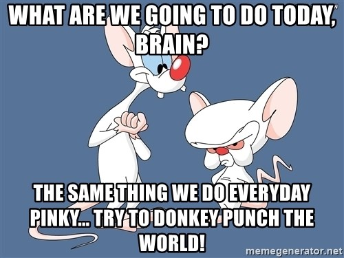 Pinky And The Brain - WHAT ARE WE GOING TO DO TODAY, BRAIN? THE SAME THING WE DO EVERYDAY PINKY... TRY TO DONKEY PUNCH THE WORLD!